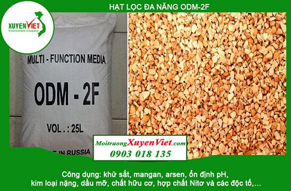 Hạt lọc đa năng ODM-2F