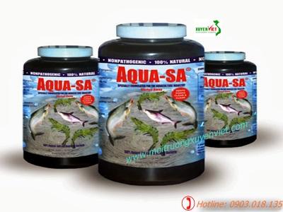 AquaClean SA xử lý ao nuôi thủy sản - Môi trường Xuyên Việt